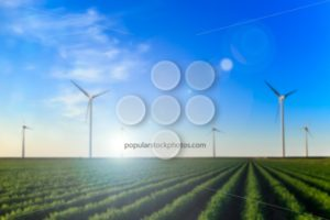 Windmills field of crops blur radial - Popular Stock Photos