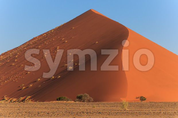 Mighty red sanddune Sossusvlei Stock Photo