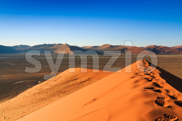 Reaching top red sanddune Sossusvlei Stock Photo
