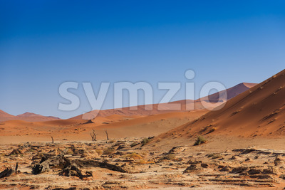 Deadvlei valley Sossuvlei Namibia Stock Photo