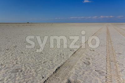 4wd track saltpan Kubu Island Stock Photo
