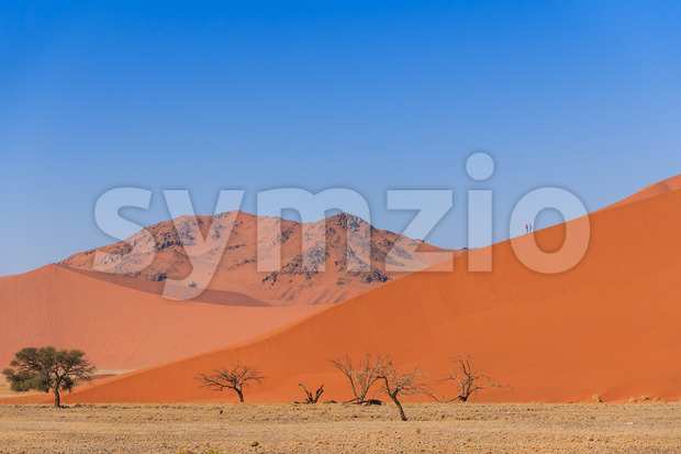 Sand dune with dead trees deadvlei Namibia Stock Photo