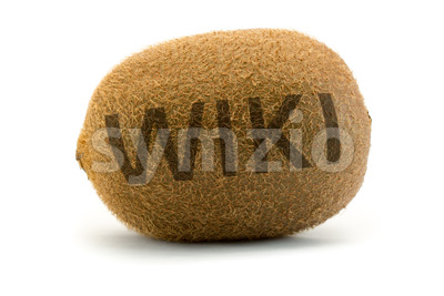 Concept wiki on kiwi Encyclopedia wikipedia burnt Stock Photo