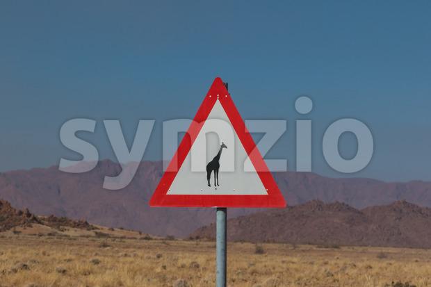 Roadsign giraffe crossing in africa Stock Photo
