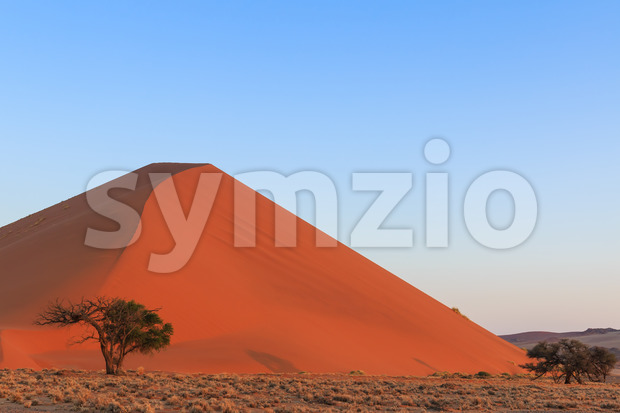 Spectacular red sanddune sunset Sossusvlei Stock Photo
