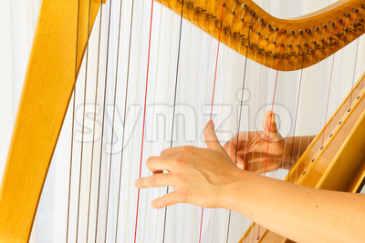Close up hands playing celtic harp Stock Photo