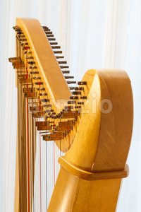 Celtic harp close-up with angle Stock Photo