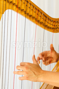 Hands playing celtic harp close-up Stock Photo