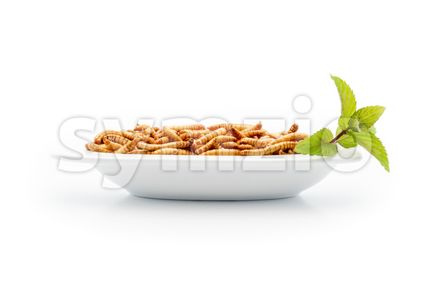Healthy mealworms on small plate with decoration Stock Photo