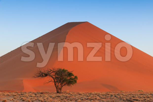 Spectacular red sanddune centered sunset Sossusvlei Stock Photo