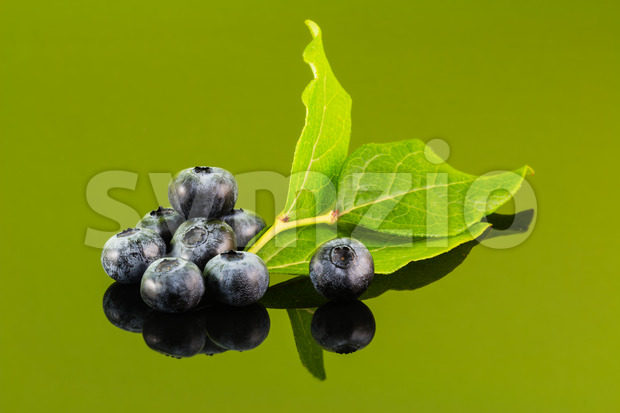Blueberry on green background with leaf Stock Photo