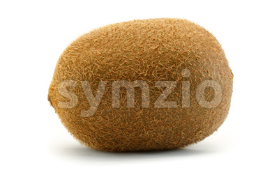 Kiwi sideview close up isolated white background Stock Photo