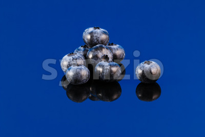 Blueberry on blue surface Stock Photo