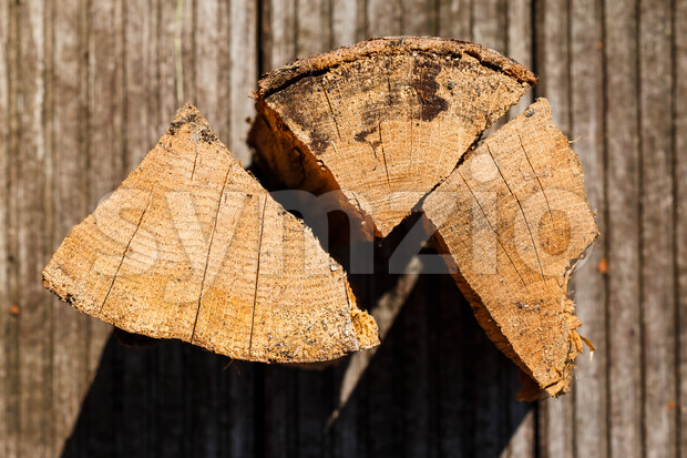 Close up of three pieces of chopped firewood. Unsharp background, detailed texture of wood.