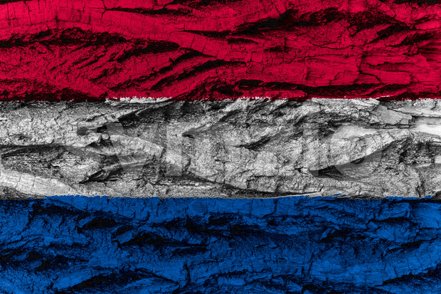 The Netherlands national flag painted wooden bark tree Stock Photo