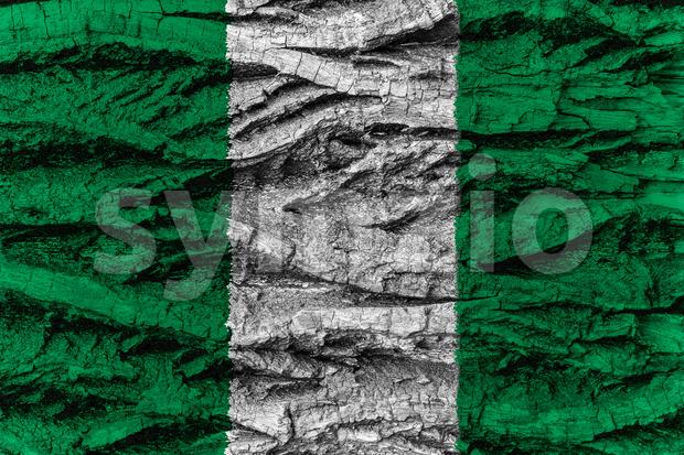Nigeria national flag painted wooden bark tree Stock Photo