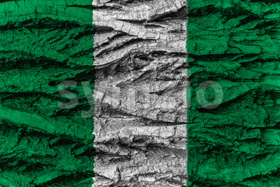 Nigeria national flag painted wooden bark tree Stock Photo