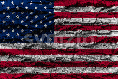 USA, American national flag painted wooden bark tree American na Stock Photo