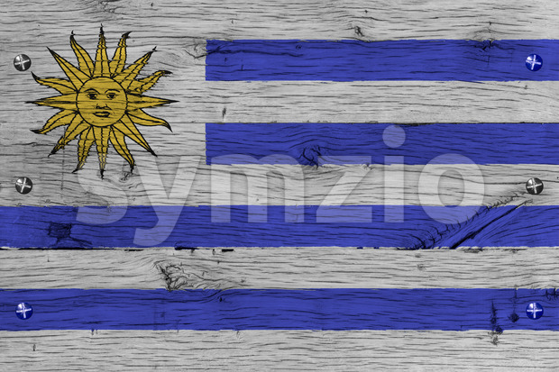 Uruguay national flag painted old oak wood fastened Stock Photo