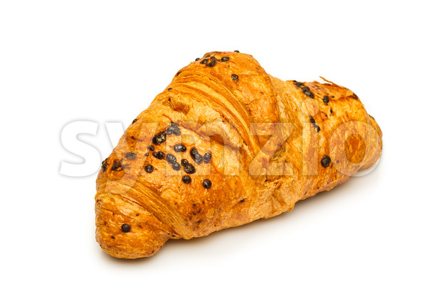 Delicious french chocolate croissant close up isolated on white background. Breakfast fresh from the bakery. Focused on front.