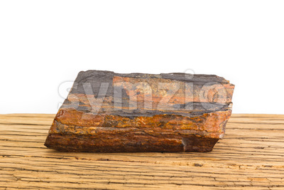Brown petrified wood oak surface white background. Stock Photo