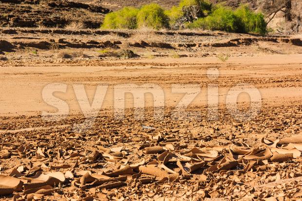Dry riverbed with cracked surface of brown mud. Namibia, Damaraland, Africa.