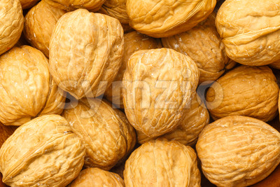 Walnuts pile close up Stock Photo