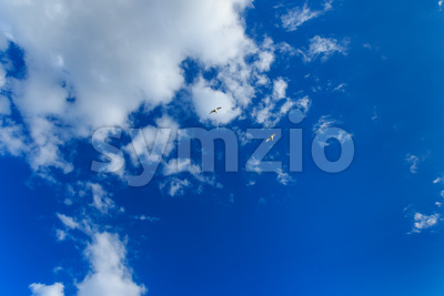 Blue sky with clouds and two birds Stock Photo