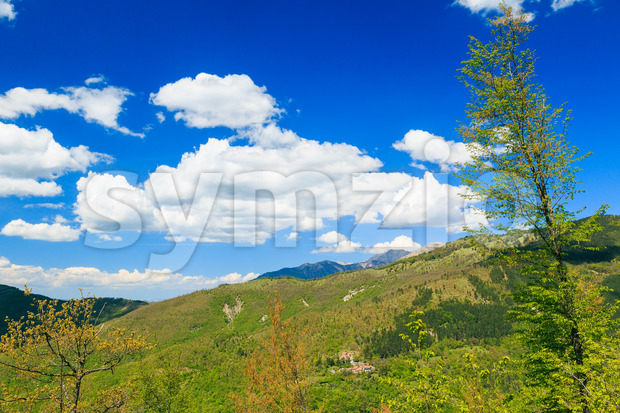 Apennine Mountains Italy vegetation Stock Photo
