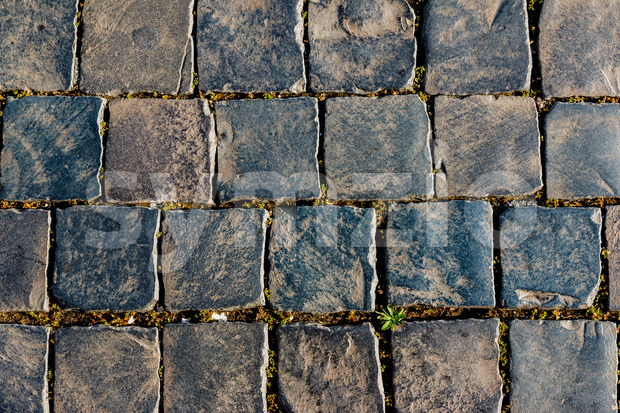Old square street stones Stock Photo