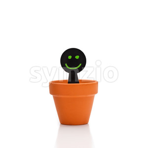 Smiling green black puppet flower pot Stock Photo