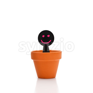 Smiling puppet appears from flower pot Stock Photo
