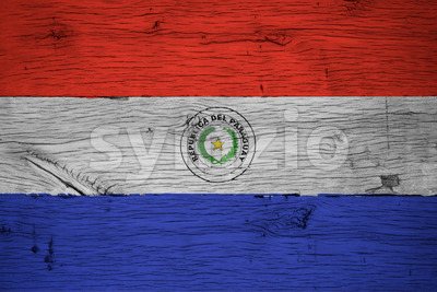 Paraguay national flag painted old oak wood Stock Photo