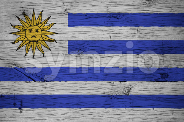Uruguay national flag painted old oak wood Stock Photo