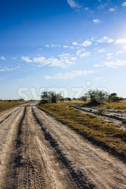 Dirt road Nxai Pan national park Botswana Stock Photo
