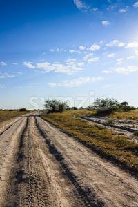 Dirt road Nxai Pan national park Botswana Stock Photo