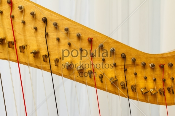 Celtic harp close-up of strings