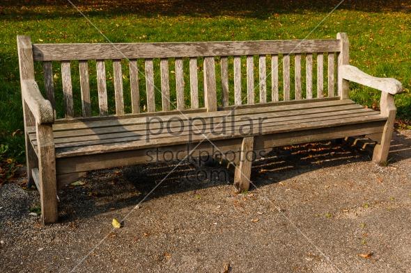 Bench park empty wood