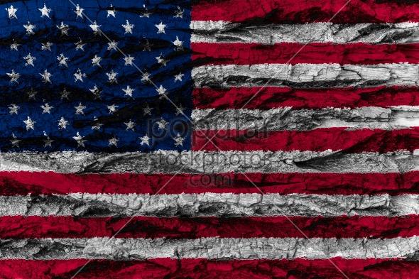 USA, American national flag painted wooden bark tree American na
