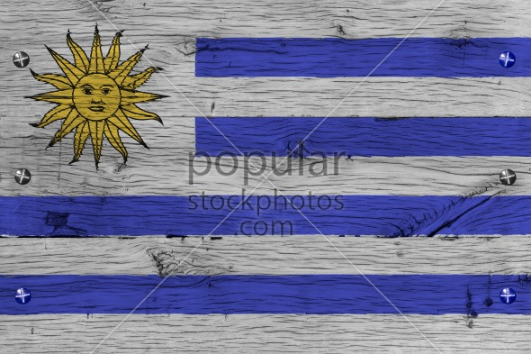 Uruguay national flag painted old oak wood fastened